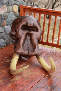 Actual Elephant Skull Bronzed With Reproduction Tusk